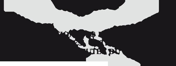 logo AKKOMQ